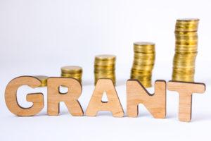 annual grant