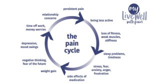 the pain cycle and it's effects