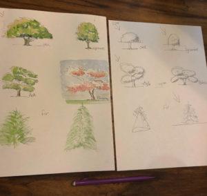Jacqueline Fleming art study of trees