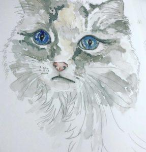 Jacqueline Fleming cat portrait
